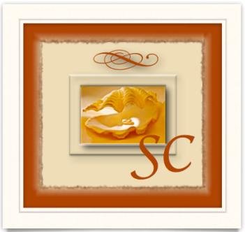 SC logo draft