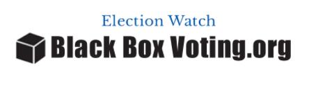 black-box-voting